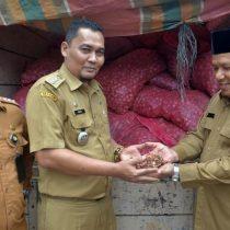 Pemko Banda Aceh Terima Hibah Bawang Merah 8,4 Ton dari Bea Cukai